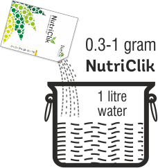 Nutriclick dosage